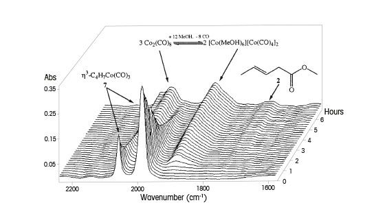 催化反应案例研究