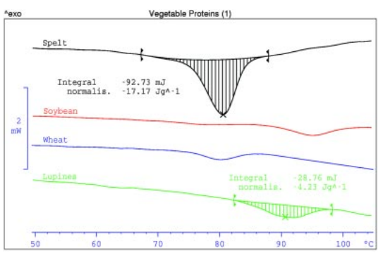 denaturation of vegetable proteins