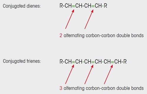 Figure 1. Conjugated carbon-carbon double bonds are formed in olive oil as a result of oxidation processes.