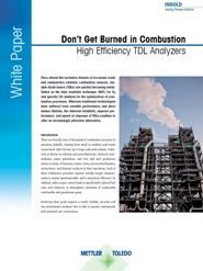 White paper: Don`t Get Burned in Combustion