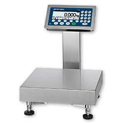 Checkweigher Scales