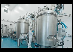 Fermentation / Cell cultures