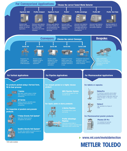 Metal Detection Portfolio Infographic