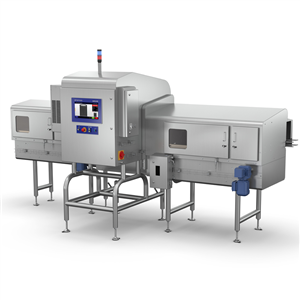 X3725 X-ray Inspection System