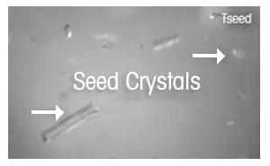 Введение затравки для кристаллизации: процедура