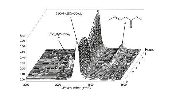 Catalysis Study