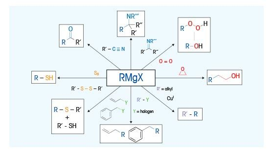 Grignard Reaction Mechanisms | Real Time Monitoring in Batch