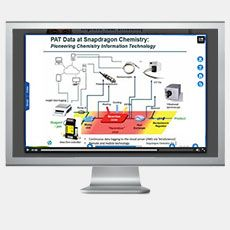 Continuous Flow Chemistry Using PAT
