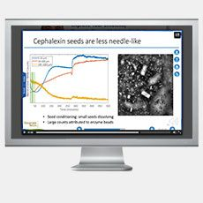Monitoring and Detection of Byproduct Crystallization