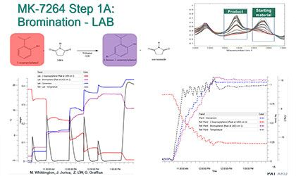 Multi-Scale PAT for Small Molecule Development